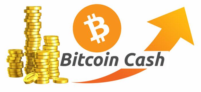 Sự phát triển Bitcoin cash
